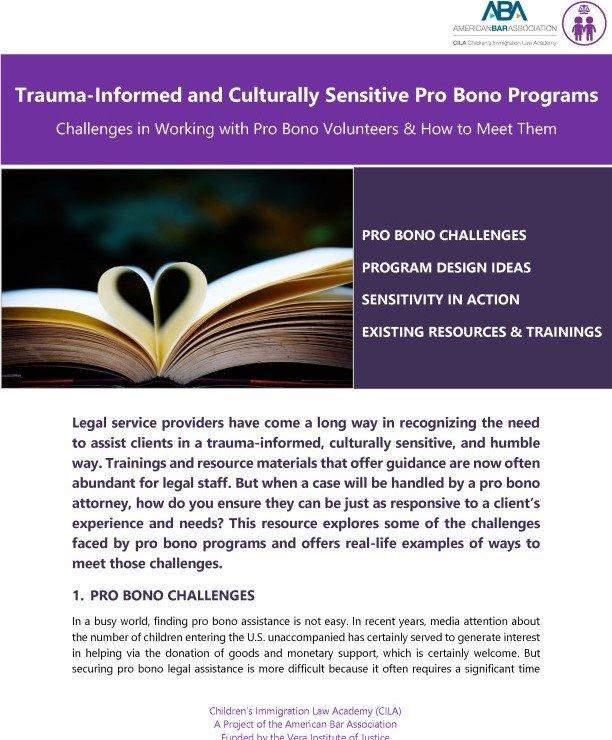 Image for 2021.05.14 Trauma-Informed and Culturally-Sensitive Pro Bono Programs